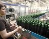 Angajaţii multinaţionalelor din industria berii au salarii medii brute de peste 1.000 de euro
