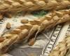Băncile au crescut creditarea doar în industrie şi agricultură