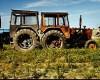Seceta face ravagii în agricultură. Se anunță un an mult mai prost decât 2014