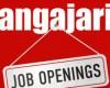 Americanii angajează 2.000 de oameni într-un oraş din România