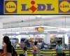 Cine sunt investitorii care au cumpărat 9 magazine Lidl din România