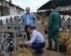 Povestea de SUCCES a fermei de la Jucu, singura din Cluj care crește exclusiv rasa Holstein