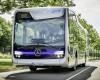 Clujul nu va avea autobuze Mercedes